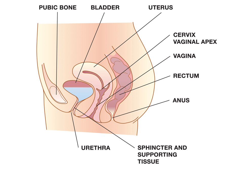 External vaginal itching and cause